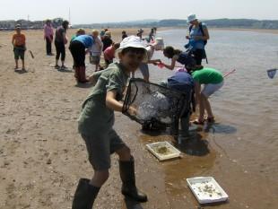 Local school children learn about their local beach
