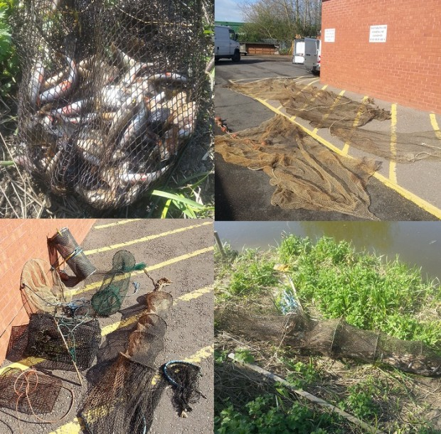 Illegal nets and traps that have been removed from the watercourse