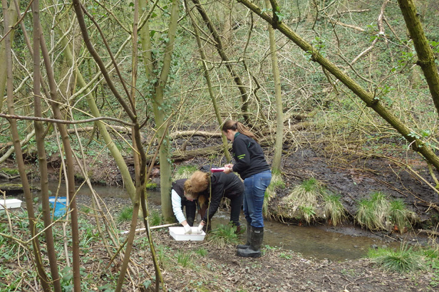 Group carrying out survey on watercourse