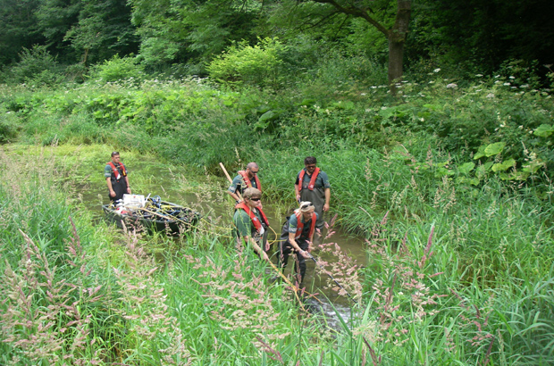 Fisheries team doing a fish rescue on the River Lathkill