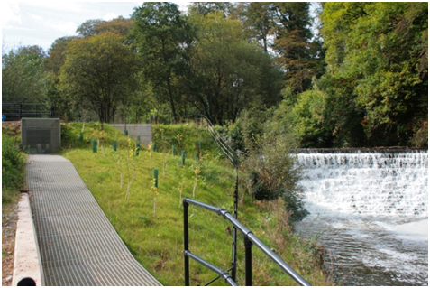 Fish pass at Quarry Bank Mill