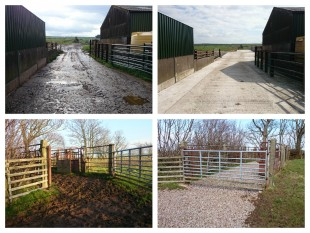 Collage of improvements made to farms and farm land by the Ellenwise project