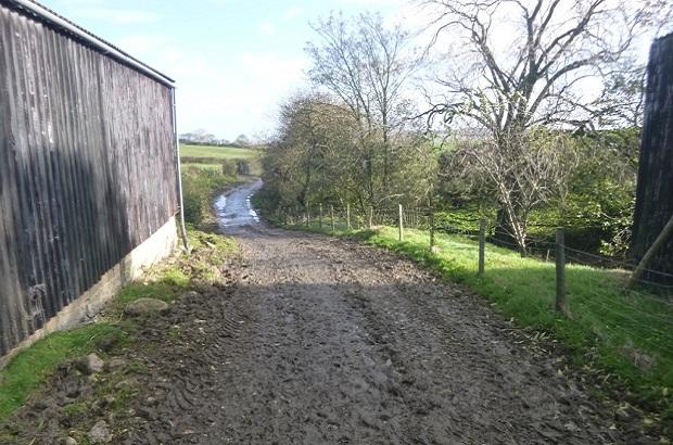 Claire farm