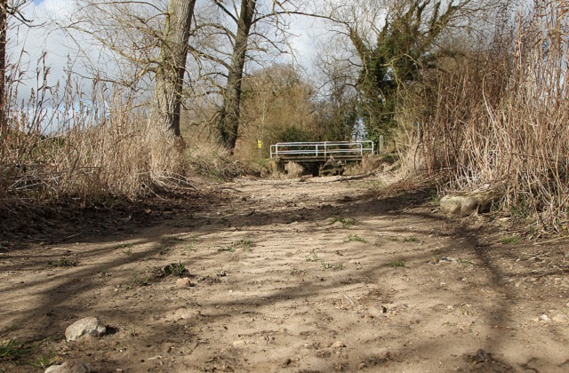 River Pang after the 2 driest years in the Thames region - Picture by Stewart Turkington