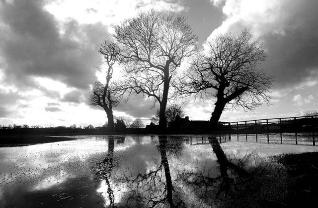Flooded pasture Wiltshire