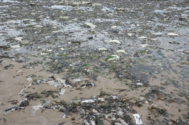 Pollution including 'unflushables' on a beach