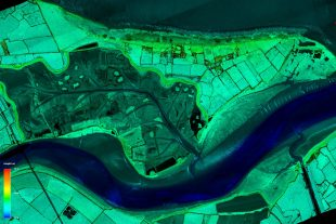 Lidar imagery of Steart Marshes, Bridgwater