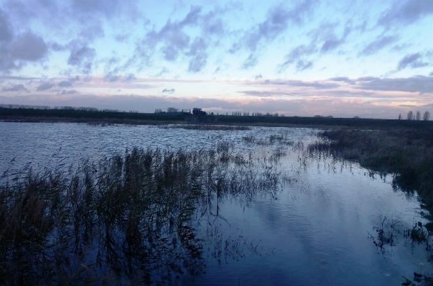 The Great Fens wetland at sunset