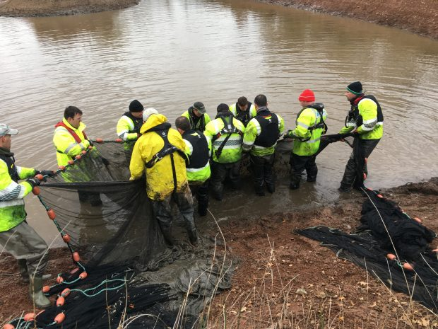 A group f EA staff in hi-vis gear standing in shallow water holding a fishing net with the shore and other nets in the foreground