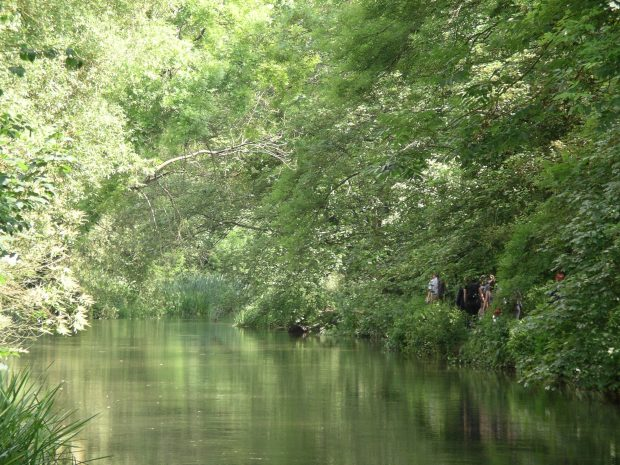View of a river with overhanging trees. People can be seen standing on the bank in among the vegetation