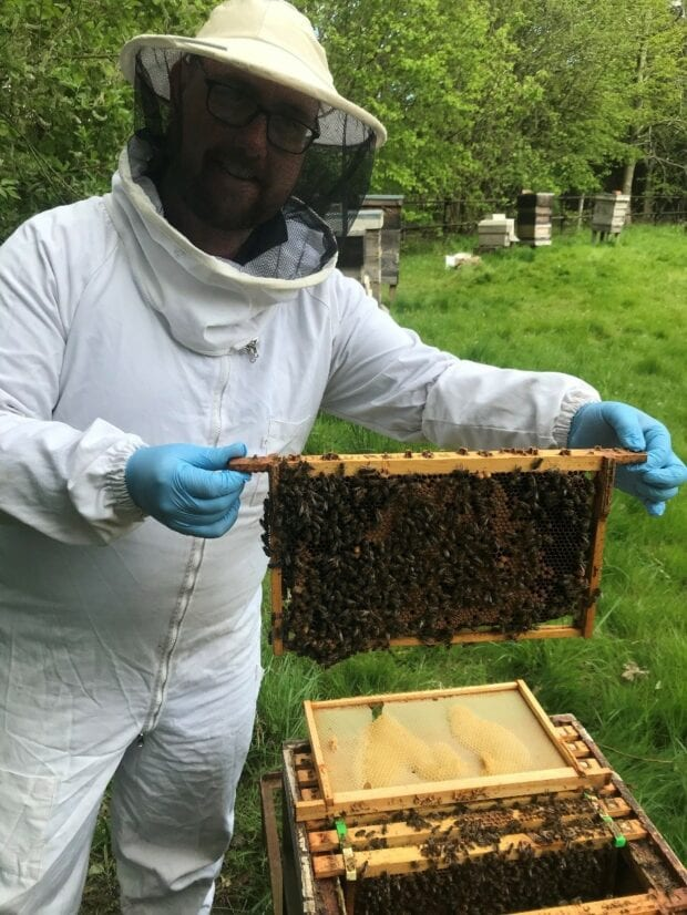 An Environment Agency officer in a bee keeping suit holding a section of his bee hive.